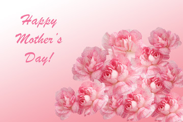 Mother's Day greeting Card with pink Carnations, lettering on a light pink background. Flower gift. Invitation.