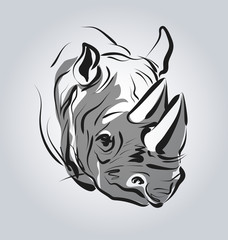 Vector illustration of the head of a rhinoceros