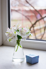 Beautiful tender bouquet of Alstroemeria with blue gift box near window