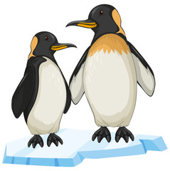 Two penguin on ice