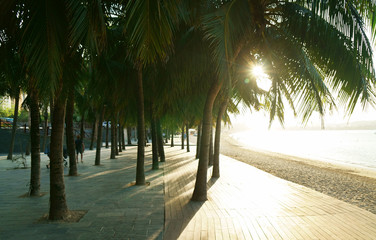 Morning tourist embankment with palm trees along beach at Dadonghai Bay on Hainan Island, China