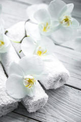 White Orchid on wooden background with towel
