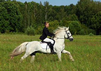 Woman in English riding clothes riding white purebred Arabian stallion