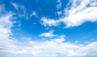 The vast cloudy and blue sky background.