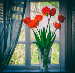 bouquet of flowers red tulips in a glass vase on the windowsill closeup. retro tinted photo with the vignette