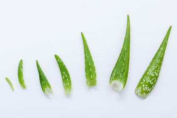 Different size of aloe vera leaves on white wooden background. Skin care ingredients and rejuvenation concept aloe vera leaves  with flat lay and copy space.