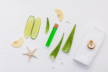Homemade skin care with natural ingredients aloe vera, lemon slice, cucumber, sea salt and peppermint on white wooden background flat lay.