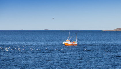 Small fishing boat in Norwegian sea, Trondheim