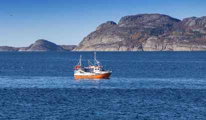 Small Norwegian fishing boat goes on fjord