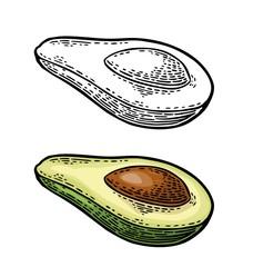 Half avocado with seed. Vector vintage engraved color