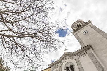 dettaglio chiesa tra gli alberi secchi