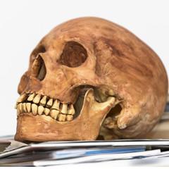 Aged human skull sitting on books isolated on white