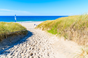Fototapete - Entrance to sandy beach in Kampen village on Sylt island, Germany