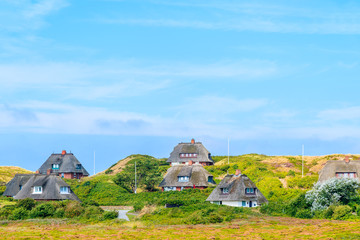Typical Frisian houses with straw roofs on sand dunes in Kampen village, Sylt island, Germany Fototapete