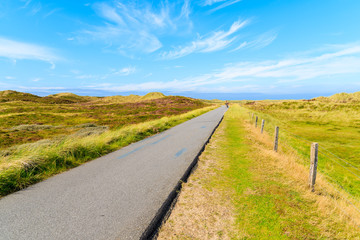 Fototapete - Bike road in countryside landscape of Sylt island near List village, Germany