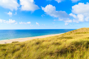 Fototapete - Grass sand dune and beautiful beach view with sunny clouds on sky, Sylt island, Germany