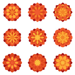 Set of color flowers flat icons