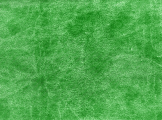 Green color artificial leather texture.