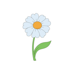 Cartoon daisy. Simple flower on white background.