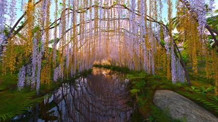 藤棚と池のある庭