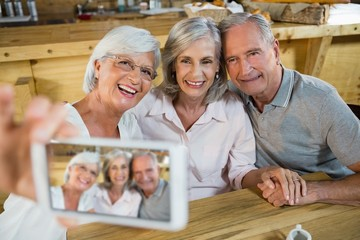 Group of senior friends taking selfie from mobile phone