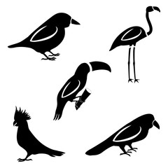 A set of five birds. Silhouettes of a sparrow, toucan, parrot, crow and flamingo.