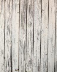 light wood panels.
