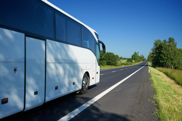 Fotobehang - The white bus traveling on asphalt road lined avenue of trees in a rural landscape on a bright sunny day