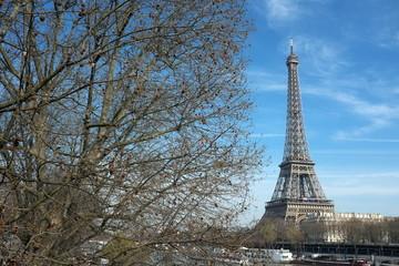 Arbres et Tour Eiffel, Paris, France.