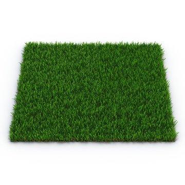 Zoysia Grass on white. 3D illustration