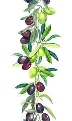 Olive tree branches. Watercolor border stripe