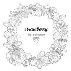 Vector round wreath with outline Strawberry with berry, flower and leaves in black isolated on white background. Fruit elements with strawberry in contour style for summer design and coloring book.