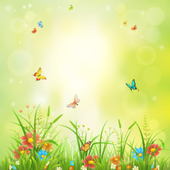 Summer backdrop with green grass, flowers and butterflies