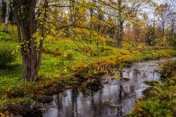 Autumn landscape. Stream in the Oranienbaum Park. Saint-Petersburg 2016.