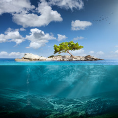 Idyllic small island with lone tree in the ocean