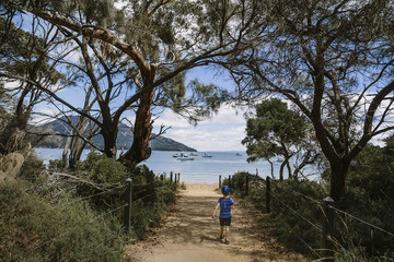 Rear view of boy walking on trail leading towards beach