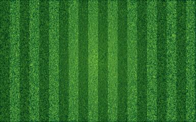 Grass sport field, lanes. Vector illustration