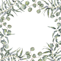 Watercolor border with eucalyptus branch. Hand painted floral frame with round leaves of silver dollar eucalyptus isolated on white background. For design or print