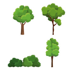 tree nature diversity plant vector illustration eps 10