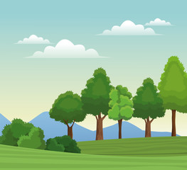 tree forest natural sky meadow mountain vector illustration eps 10