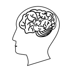 human head brain outline vector illustration eps 10
