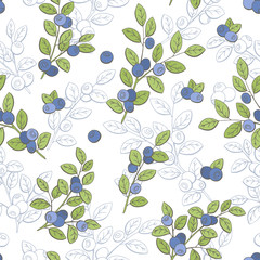Blueberry graphic color seamless pattern sketch illustration vector