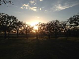 Country sunset. Taken in Jacksboro Texas
