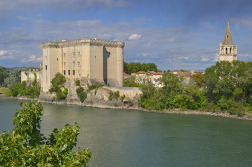 View to King Rene's castle and St Martha's Church from opposite bank of Rhone river. Tarascon, France