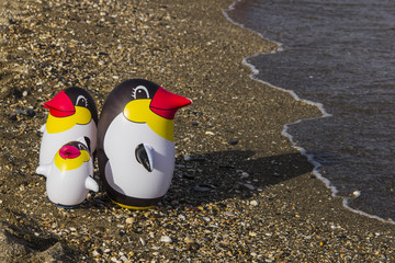 Pingüinos en la orilla de la playa