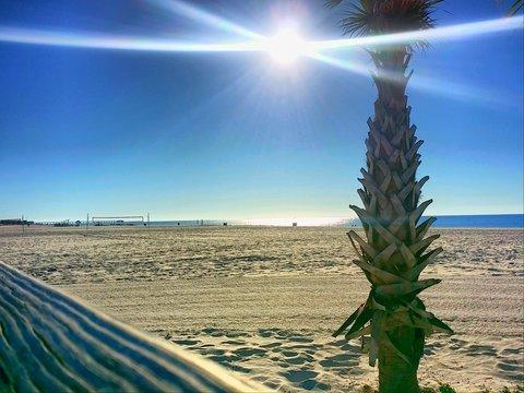 gulf coast sunrise