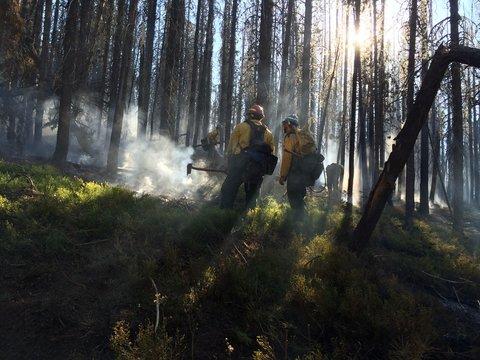 Wildland firefighters in Oregon.