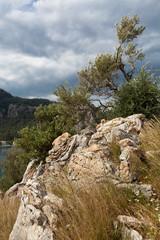 Dzikie skały porośnięte roślinnością na tle dramatycznego nieba.