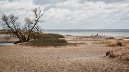 Two people walking on the beach in snowfree winter at Haväng, Österlen, Skåne, Sweden