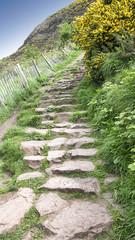 Scotland, Edinburgh Arthur's Seat stone path in the mountains leading to the peak